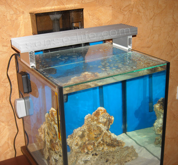 Led светильник для аквариума своими руками фото 686
