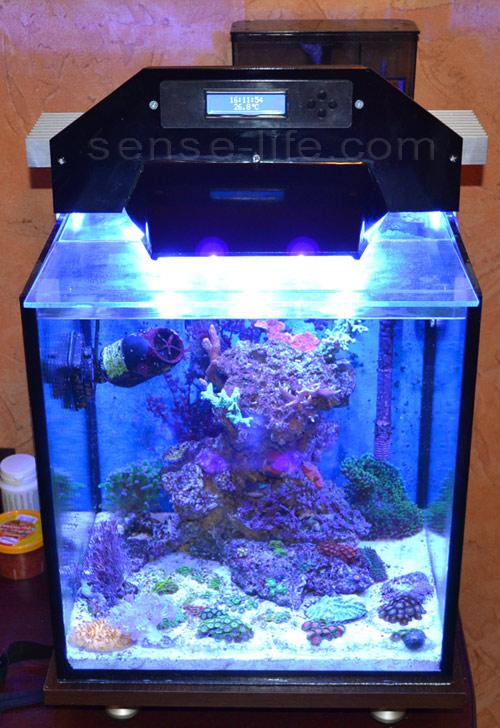 Led лампы для аквариума своими руками 32