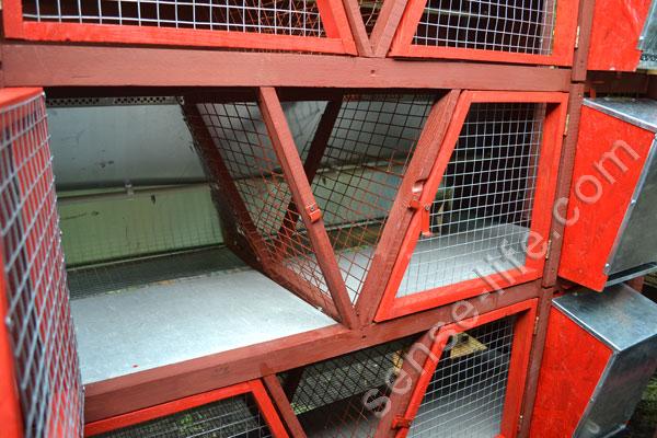 Клетки для кроликов по золотухину быстро и просто