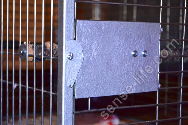 кормушка на клетке