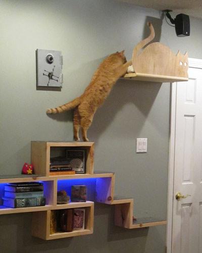 дом для кошки на стене