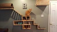 Настенная мебель (полка) для кошек своими руками
