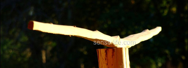 Контроллер для сушки древесины